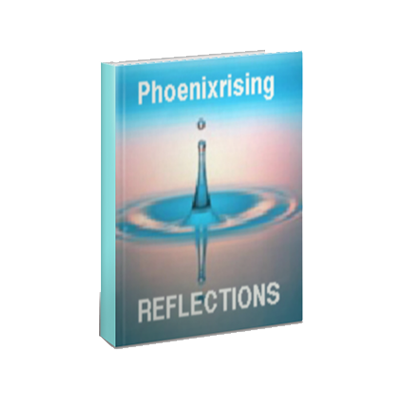 Phoenixrising Reflections